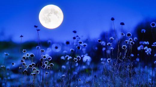 Kuu on kõle ja külm ..aga armastus on soe :)